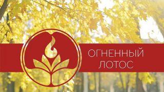 Отзывы после первого месяца курса Школы Огненный Лотос